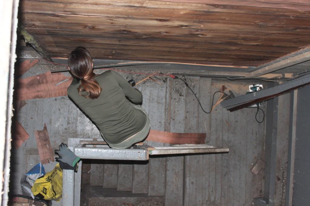 Sarah removing siding